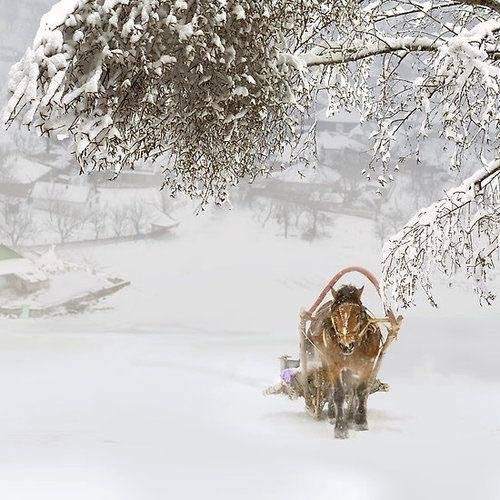 Photos d'hiver  - Page 2 0e531b10