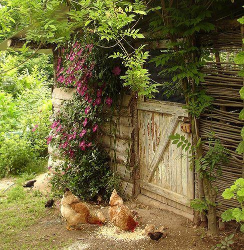 Photos de printemps/été - Page 3 32098710