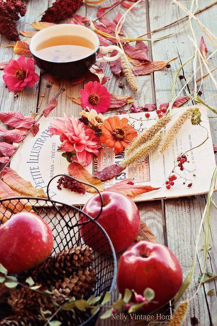 Photos d'automne - Page 6 3406c010