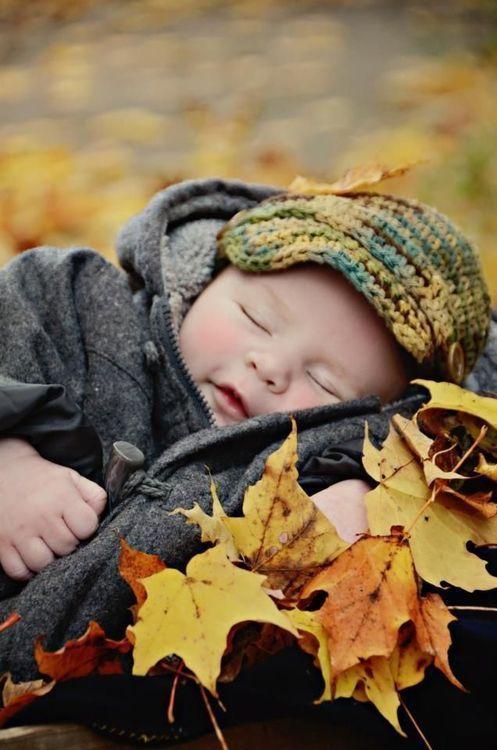 Photos d'automne - Page 5 3a458d10