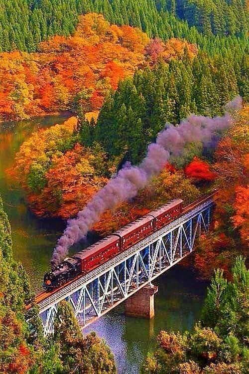 Photos d'automne - Page 5 5431c610