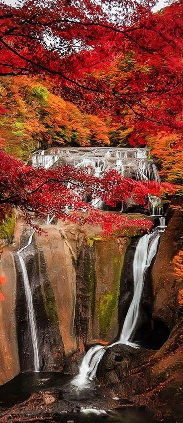 Photos d'automne - Page 7 54a52a10