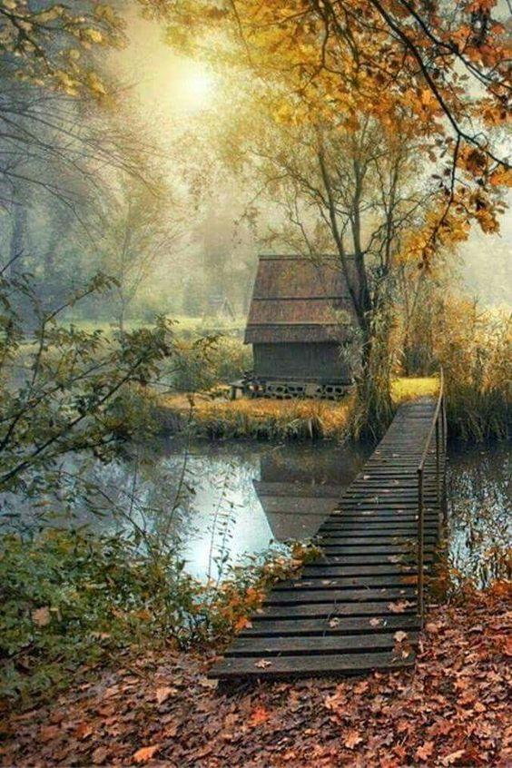 Images d'automne  - Page 7 7457b910