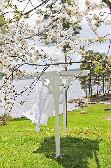 Photos de printemps/été - Page 4 9922bd11