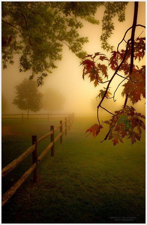 Photos d'automne - Page 5 B26df010