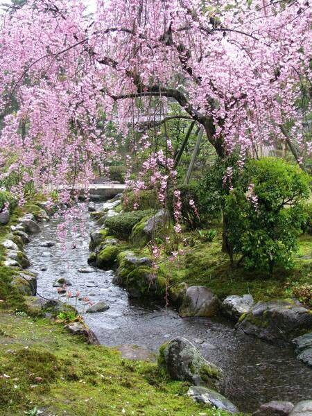 Photos de printemps/été - Page 4 B4e72310