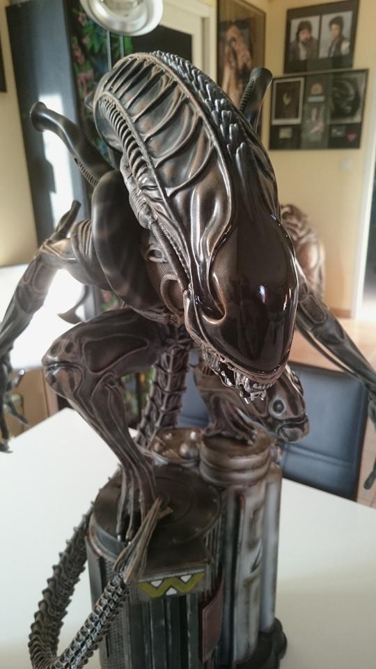 Repaint Alien Warrior 1/4  Dsc_0318