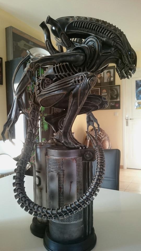 Repaint Alien Warrior 1/4  Dsc_0320