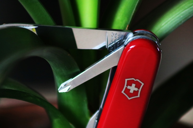 Mes 91mm rouge et ALOX 93 mm ( Victorinox ) -- ( Philippe ) Img_8816