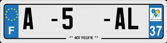 Ma 407 2.2 Hdi 170cv FELINE. Plaque10
