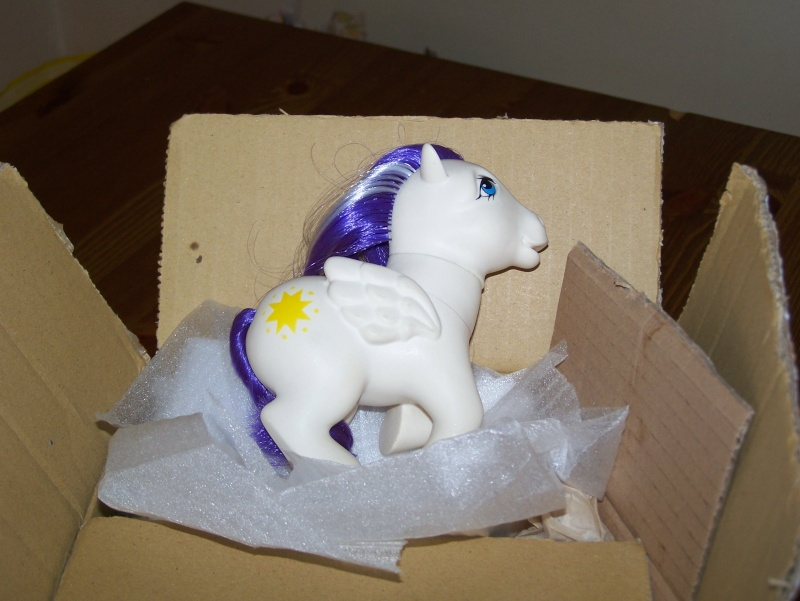 Mon Petit Poney / My Little Pony G1 (Hasbro) 1982/1995 100_6310