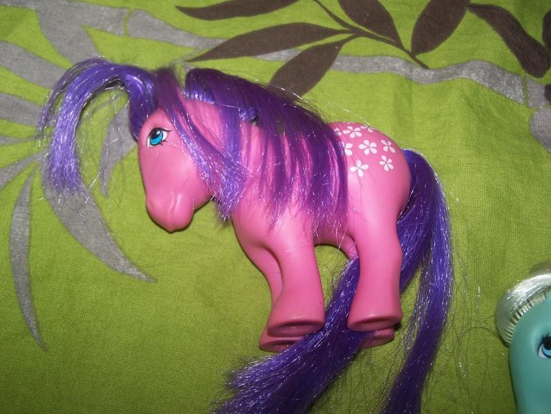 Mon Petit Poney / My Little Pony G1 (Hasbro) 1982/1995 100_6920