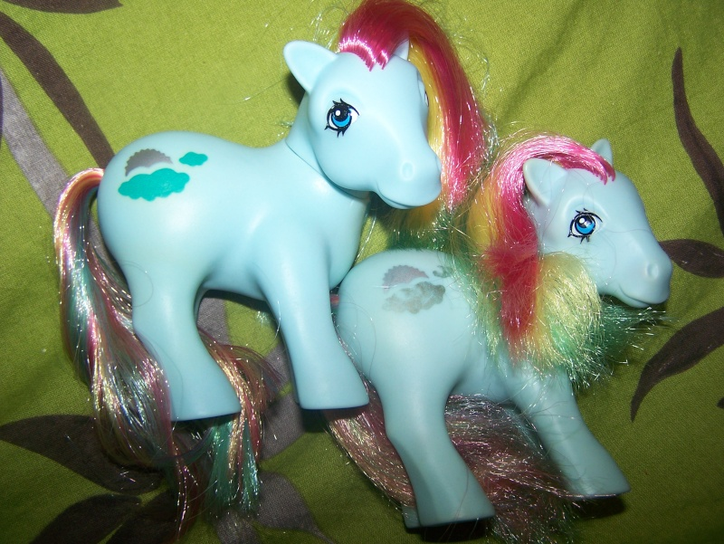 Mon Petit Poney / My Little Pony G1 (Hasbro) 1982/1995 100_7013