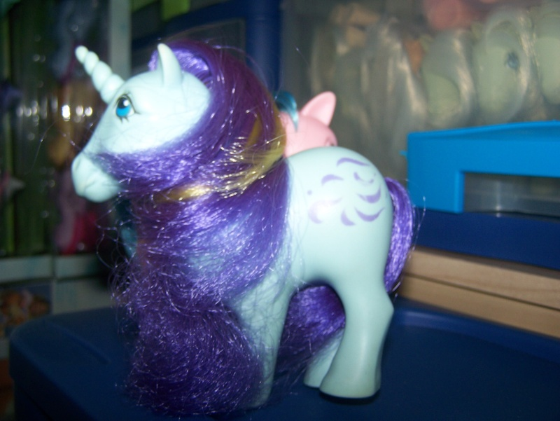 Mon Petit Poney / My Little Pony G1 (Hasbro) 1982/1995 100_7016