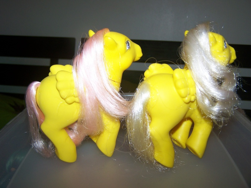 Mon Petit Poney / My Little Pony G1 (Hasbro) 1982/1995 100_7040