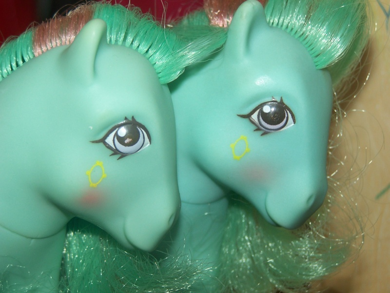 Mon Petit Poney / My Little Pony G1 (Hasbro) 1982/1995 100_7117