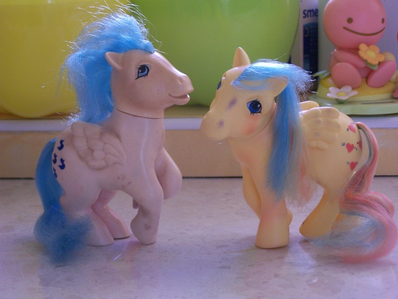 Mon Petit Poney / My Little Pony G1 (Hasbro) 1982/1995 100_7333