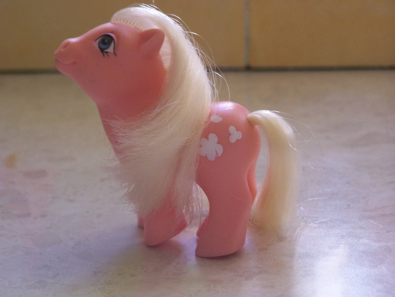 Mon Petit Poney / My Little Pony G1 (Hasbro) 1982/1995 100_7341
