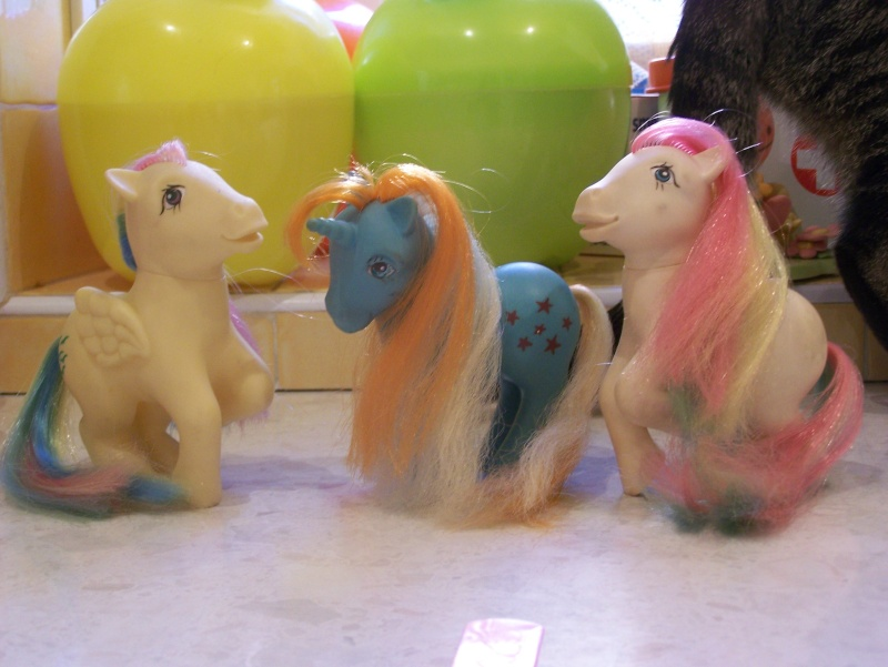 Mon Petit Poney / My Little Pony G1 (Hasbro) 1982/1995 100_7350