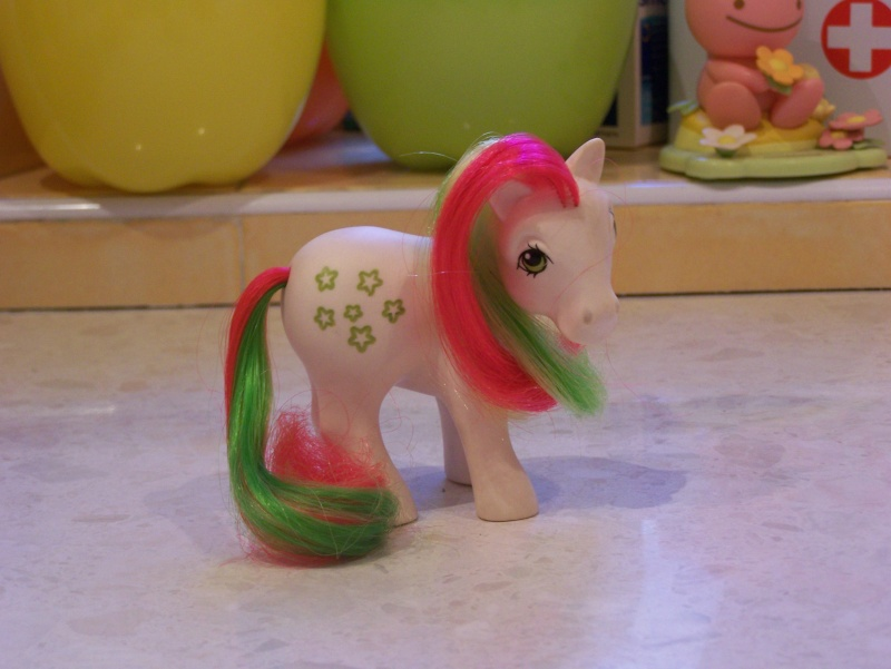 Mon Petit Poney / My Little Pony G1 (Hasbro) 1982/1995 100_7428