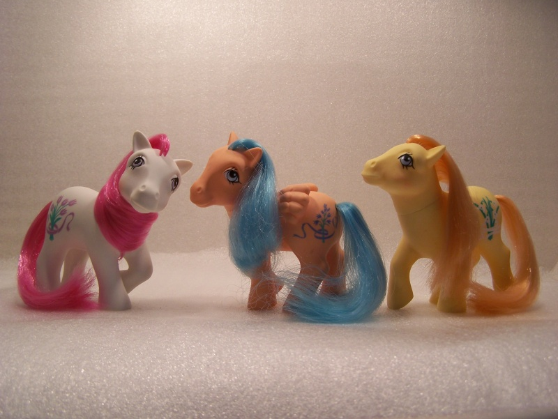 Mon Petit Poney / My Little Pony G1 (Hasbro) 1982/1995 An_8_030