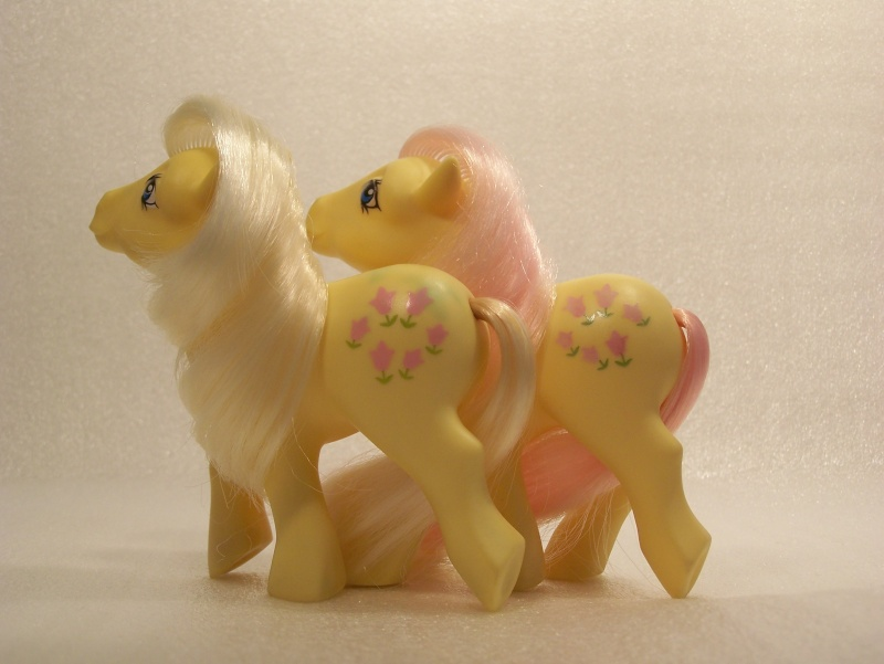 Mon Petit Poney / My Little Pony G1 (Hasbro) 1982/1995 Poney_60