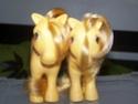 Mon Petit Poney / My Little Pony G1 (Hasbro) 1982/1995 100_7317
