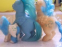 Mon Petit Poney / My Little Pony G1 (Hasbro) 1982/1995 100_7338