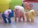 Mon Petit Poney / My Little Pony G1 (Hasbro) 1982/1995 100_7339