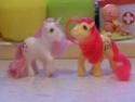 Mon Petit Poney / My Little Pony G1 (Hasbro) 1982/1995 100_7419