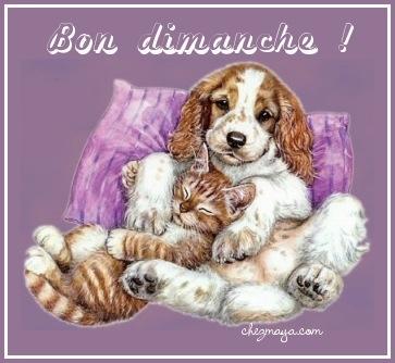 bonjour - Page 3 Bon_di11