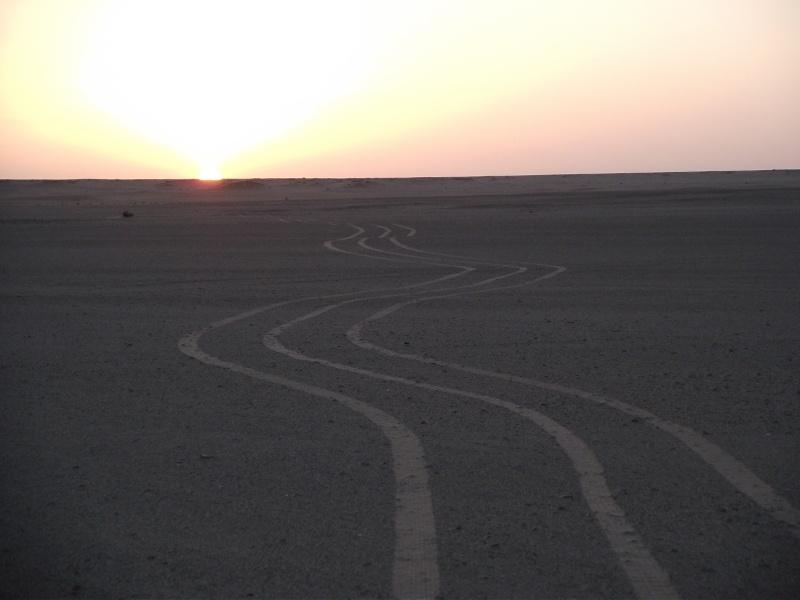 maroc 2010 Dscf1310