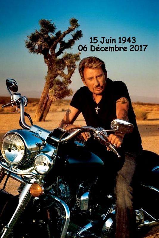 Adieu Johnny 24301010