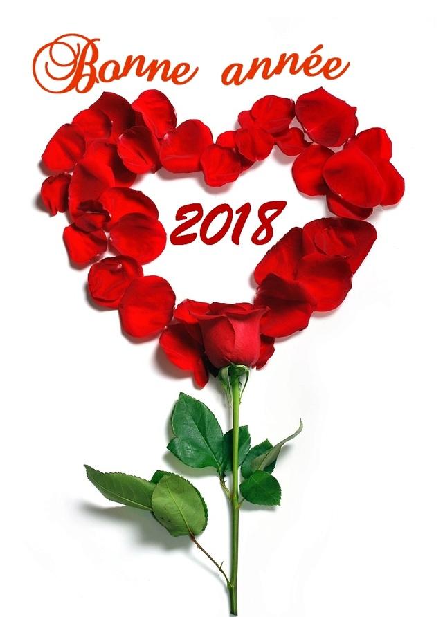 Hello 2018 Bonne_12