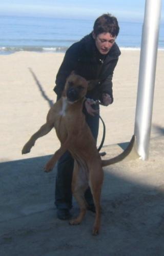 VIP et MAX à la plage (2 mars 2010) Naty-413