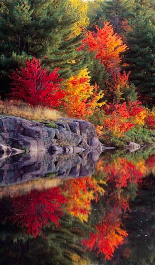 Photos d'automne - Page 7 14956610