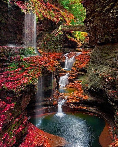 Photos d'automne - Page 7 17155310