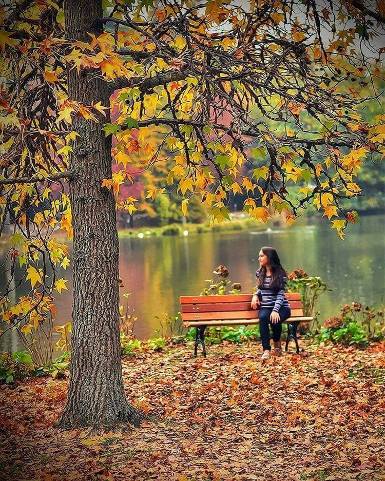 Photos d'automne - Page 3 21616210
