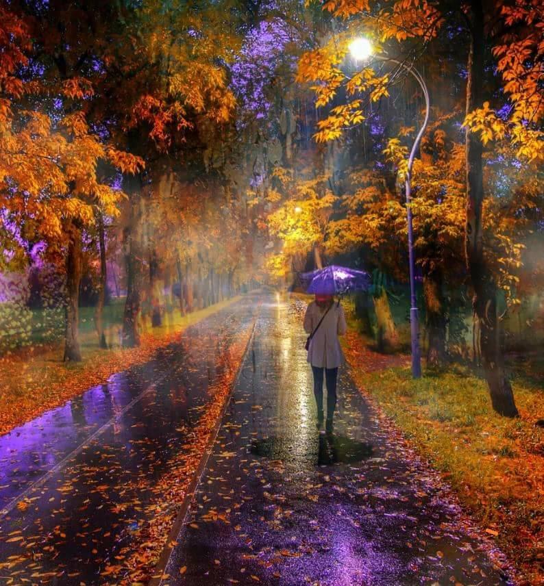 Photos d'automne - Page 3 22281610