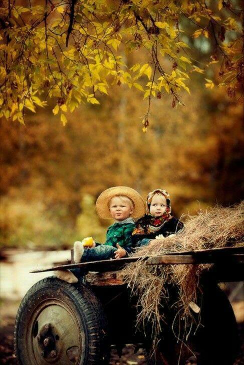 Photos d'automne - Page 3 22365310