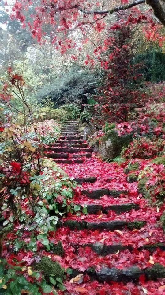 Photos d'automne - Page 3 22491810