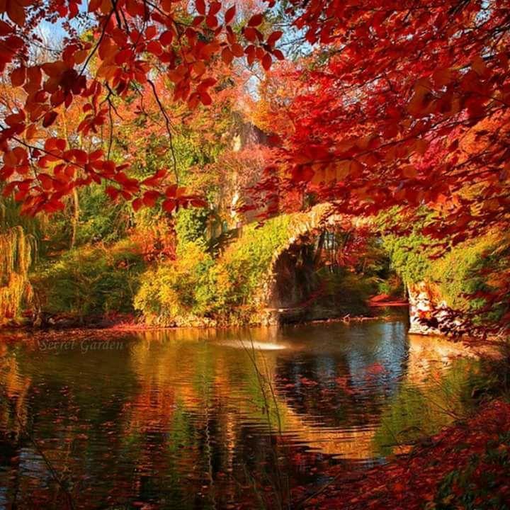 Photos d'automne - Page 5 22788810