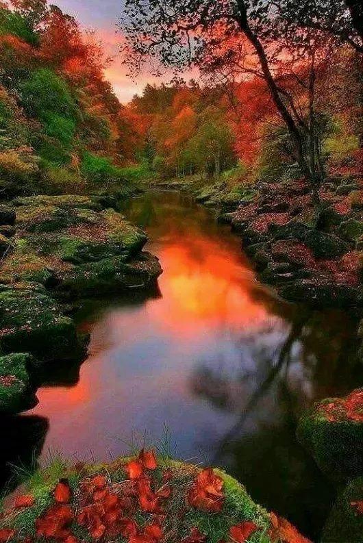 Photos d'automne - Page 5 23032610