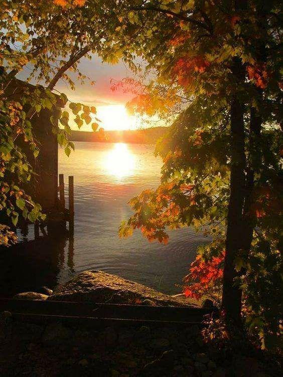 Photos d'automne - Page 6 23380310