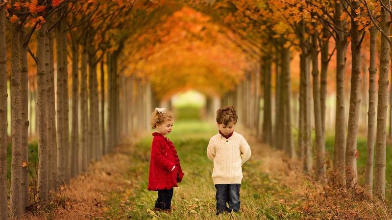 Photos d'automne - Page 7 23550110