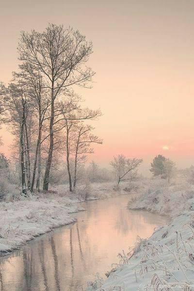 Photos d'hiver  - Page 9 23795412