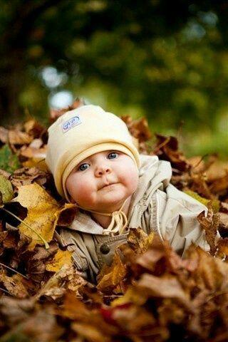 Photos d'automne - Page 7 24129610