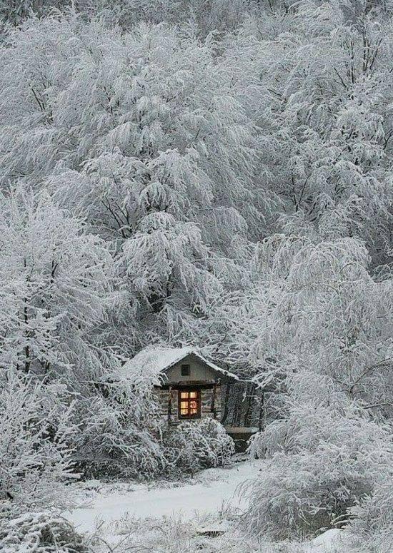 Photos d'hiver  - Page 2 24174510
