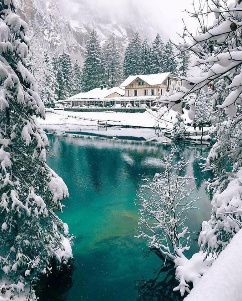 Photos d'hiver  - Page 9 24176910