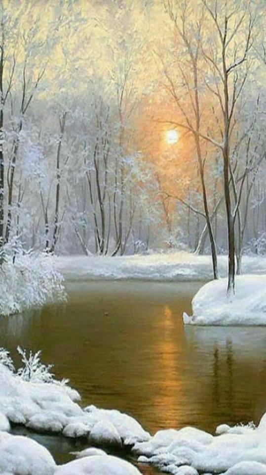 Photos d'hiver  - Page 2 24910010